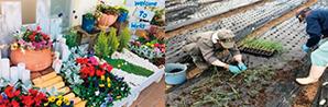 農産品・園芸